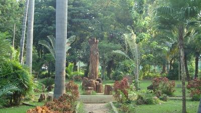 బొటానికల్ గార్డెన్, అక్వేరియం