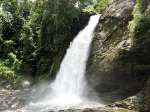 Here's Why You Should Visit Wayanad