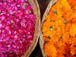 Explore The Traditional Markets Of India
