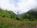 National Parks to Visit During Monsoon in India
