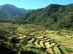 10 Best Places To Visit In Nagaland In August