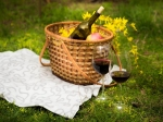 World Picnic Day 2021: 5 Best Picnic Spots To Visit In And Around Bangalore