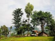 Nagaland : Five Best Places to Visit