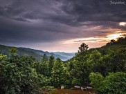 A Weekend Trip from Bangalore to Chikmagalur!