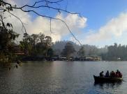 Best Places to Visit in Kodaikanal