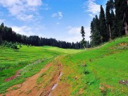 Gulmarg –  A Must See Place for All Seasons