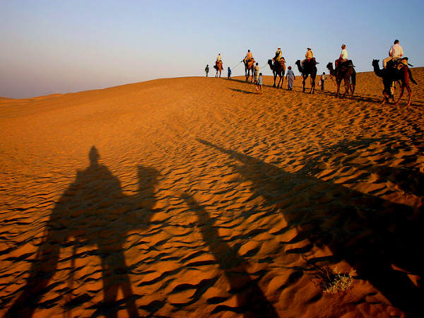 Camel Rides in India