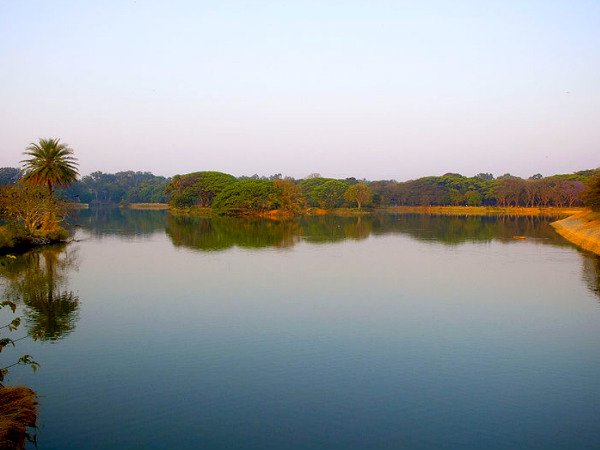 Lal Bagh Lake, A Bite of Nature!