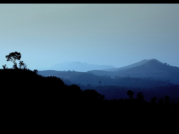 The Charm of Chikmagalur!
