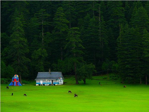 Sightseeing and Activities in Khajjar