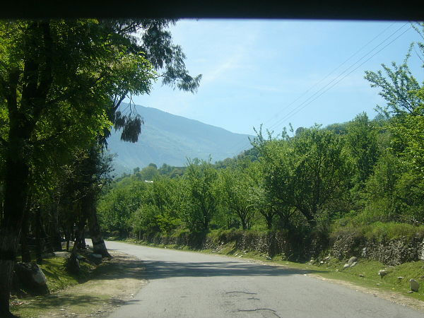 Road Trip from Delhi to Manali via Shimla