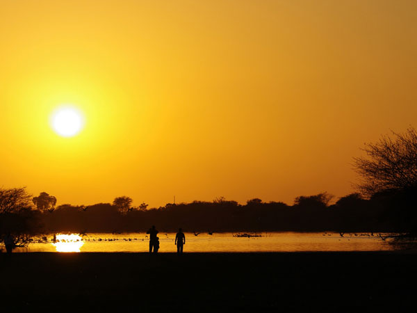 The Thol Lake in Mehsana, Gujarat