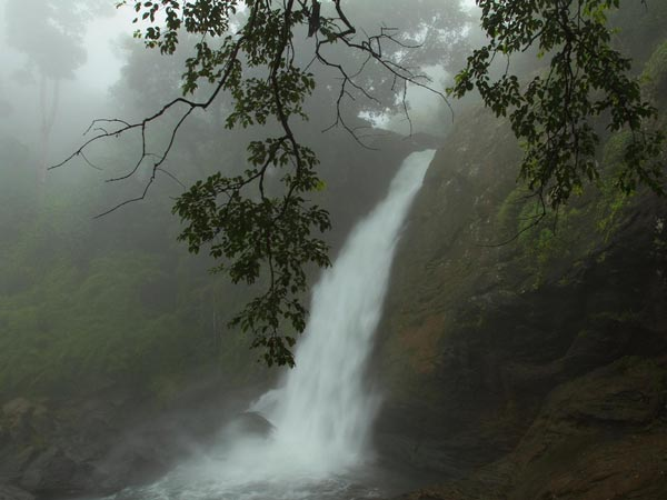 Monsoon Glory At The Waterfalls