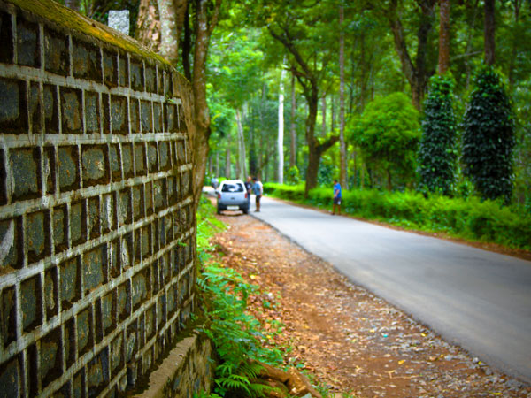 How to Reach Yercaud