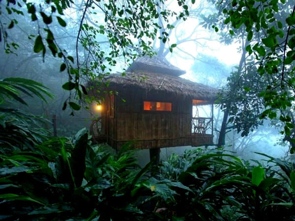 5 Amazing Treehouses in South India