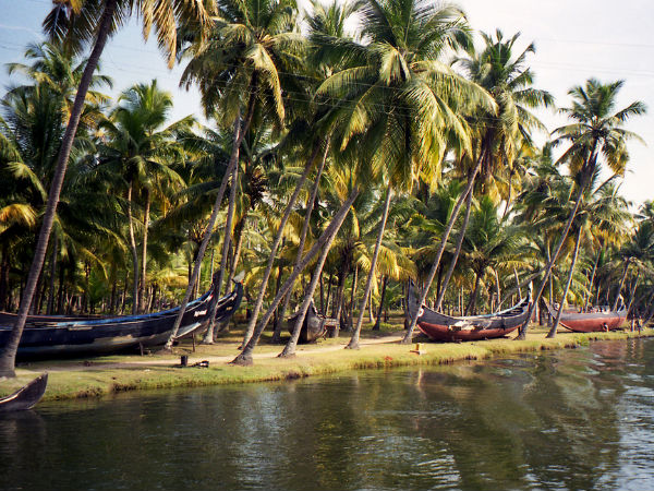 Magical Backwaters