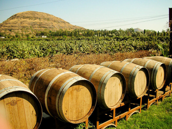 Travel to the 5 Vineyards of India