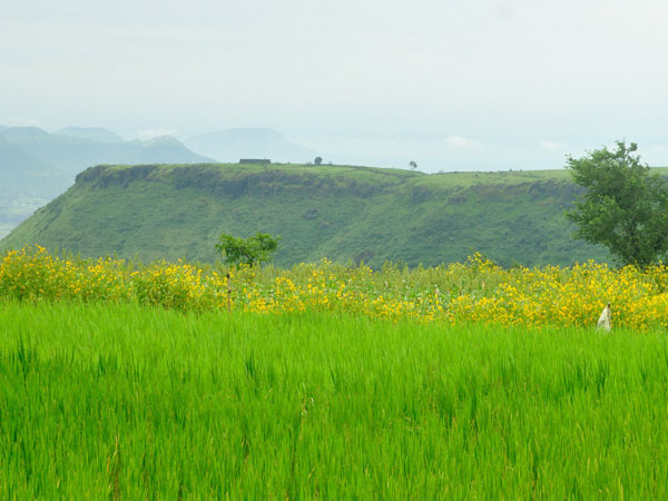 Key Attractions of Kaas Plateau