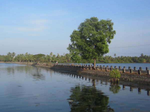 The waterways of Valiyaparamba