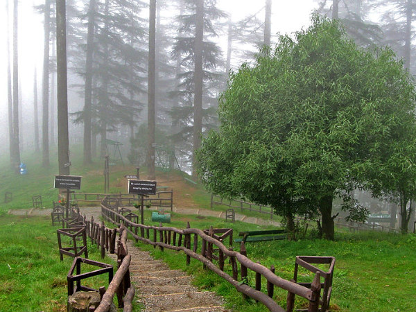 Travel to the Picturesque Hill Station of Dhanaulti