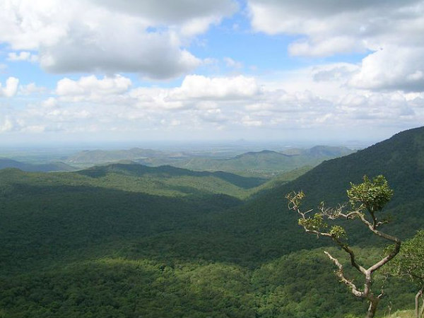 Tamil Nadu Tourism – The Scenic Town of Mudumalai