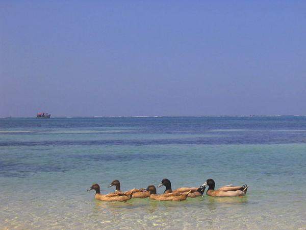 Mesmerising Islands of Lakshadweep