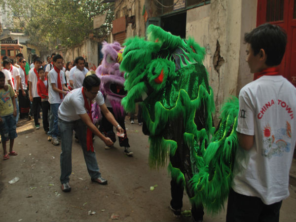 New Year Festival- Chinese Dragon