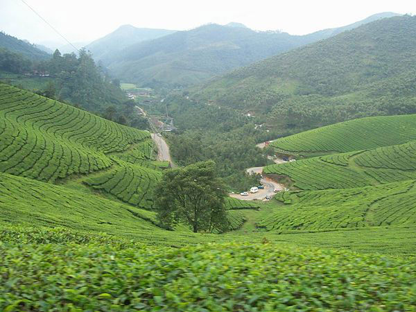 10 Places to Visit in South India this September