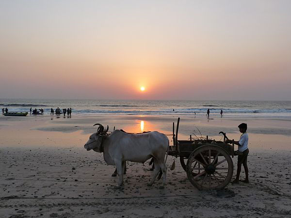 10 One Day Weekend Getaways Near Mumbai