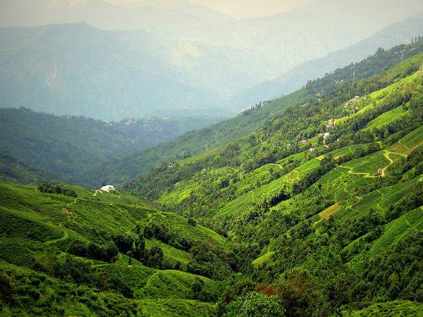 The Fascinating Views of Darjeeling