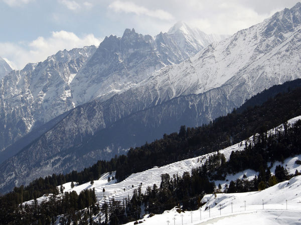 Auli in Winter