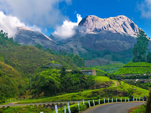 6 Places to Visit in Munnar