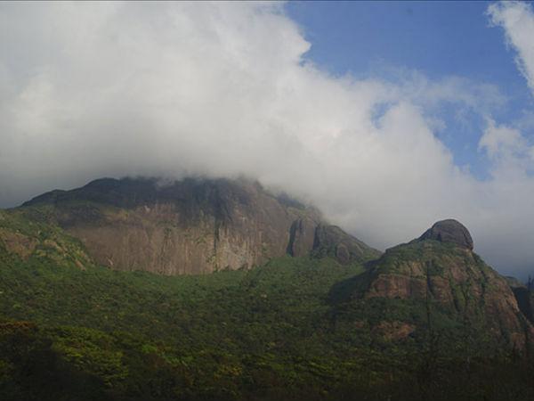 Agasthyakoodam Trekking: The Ultimate Adventure