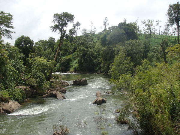 Find Out the Hidden Trails in Coorg