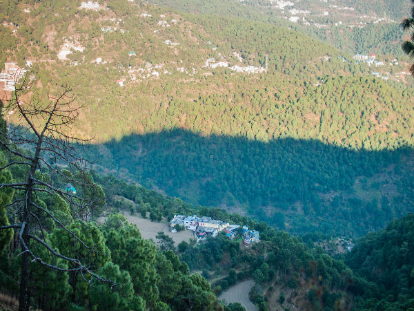 Nature Camping in Kasauli