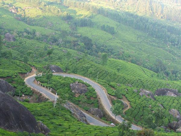 A Mystifying Road Trip From Chennai to Munnar