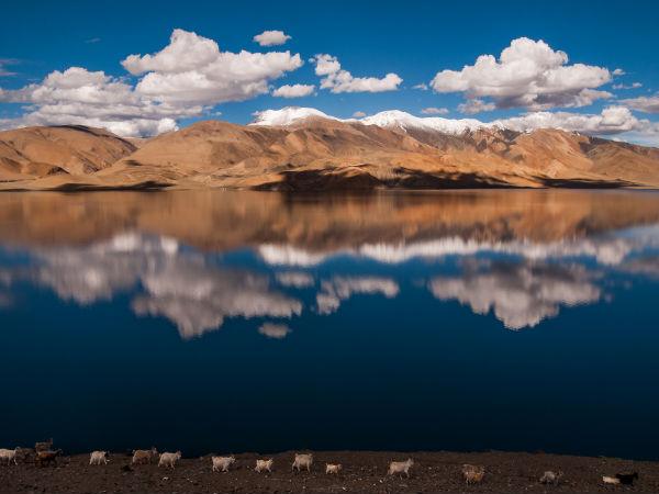 7 Secret Destinations in Ladakh That'll Amaze You!
