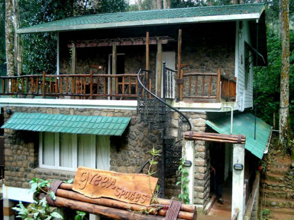8 Best Resorts in Munnar For a Cool Time
