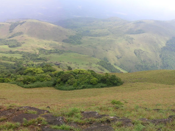 Things to Know About Tadiandamol Trek