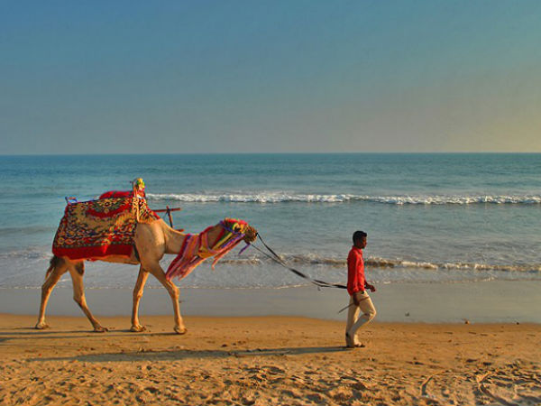 Hypnotising Beaches in Odisha!