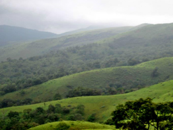Top 5 must-do Things in Chikmagalur
