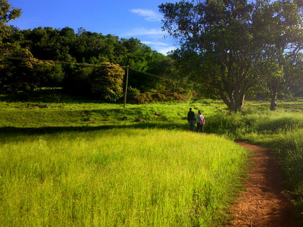 Amazing Hill Stations Near Bengaluru For A Quick Visit