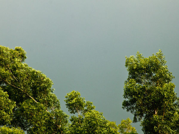 Glimpses of rain in Kerala