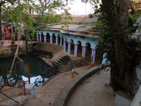 A Step in the Forgotten Shivpuri