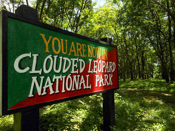 The Clouded Leopard National Park
