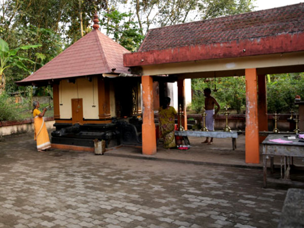 Visit The Only Spider Temple in Kerala!