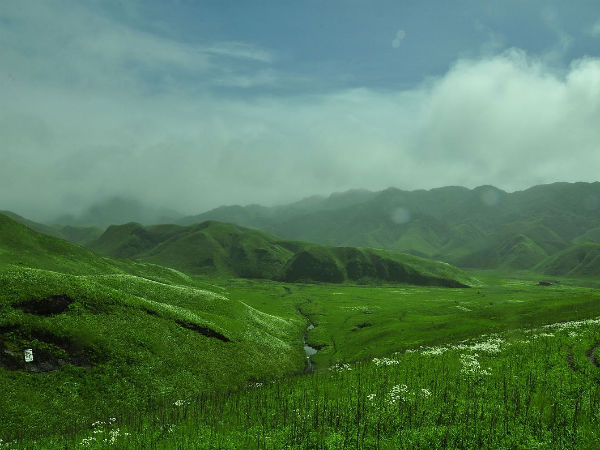 Astonishing Beauty of Dzukou Valley