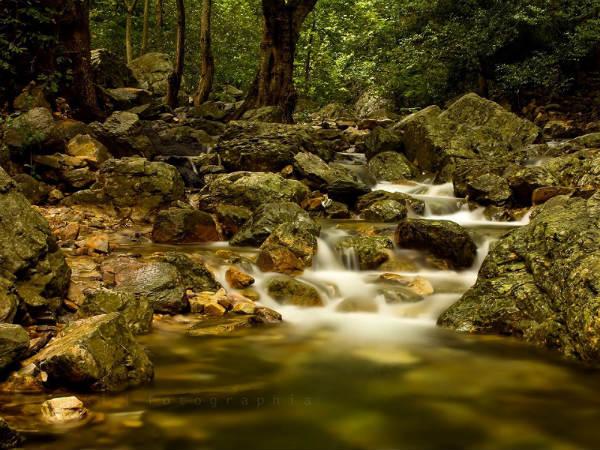 Amazing Tada Falls Trek