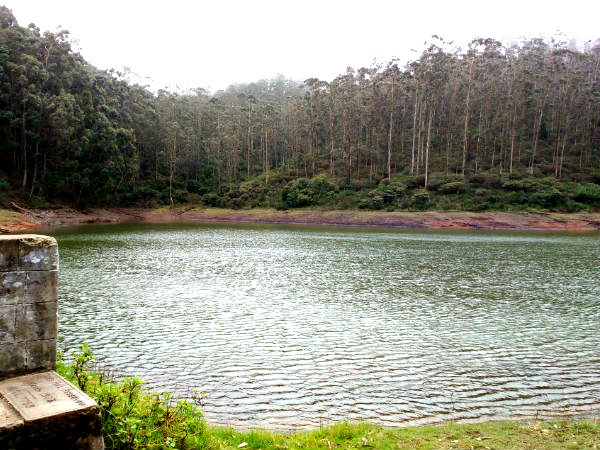 Tiger Hills in Ooty- a perfect destination for nature lovers