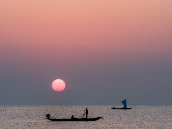 Chilika Lake: Birds, Dolphins and Many More